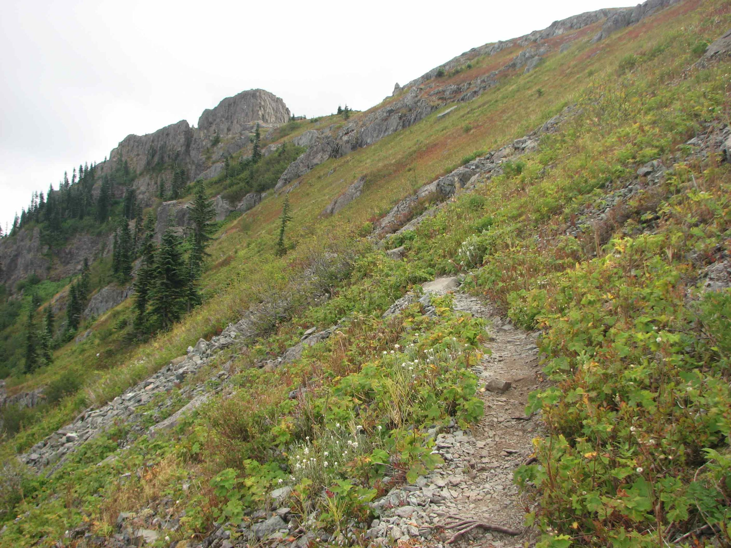 Ed's Trail