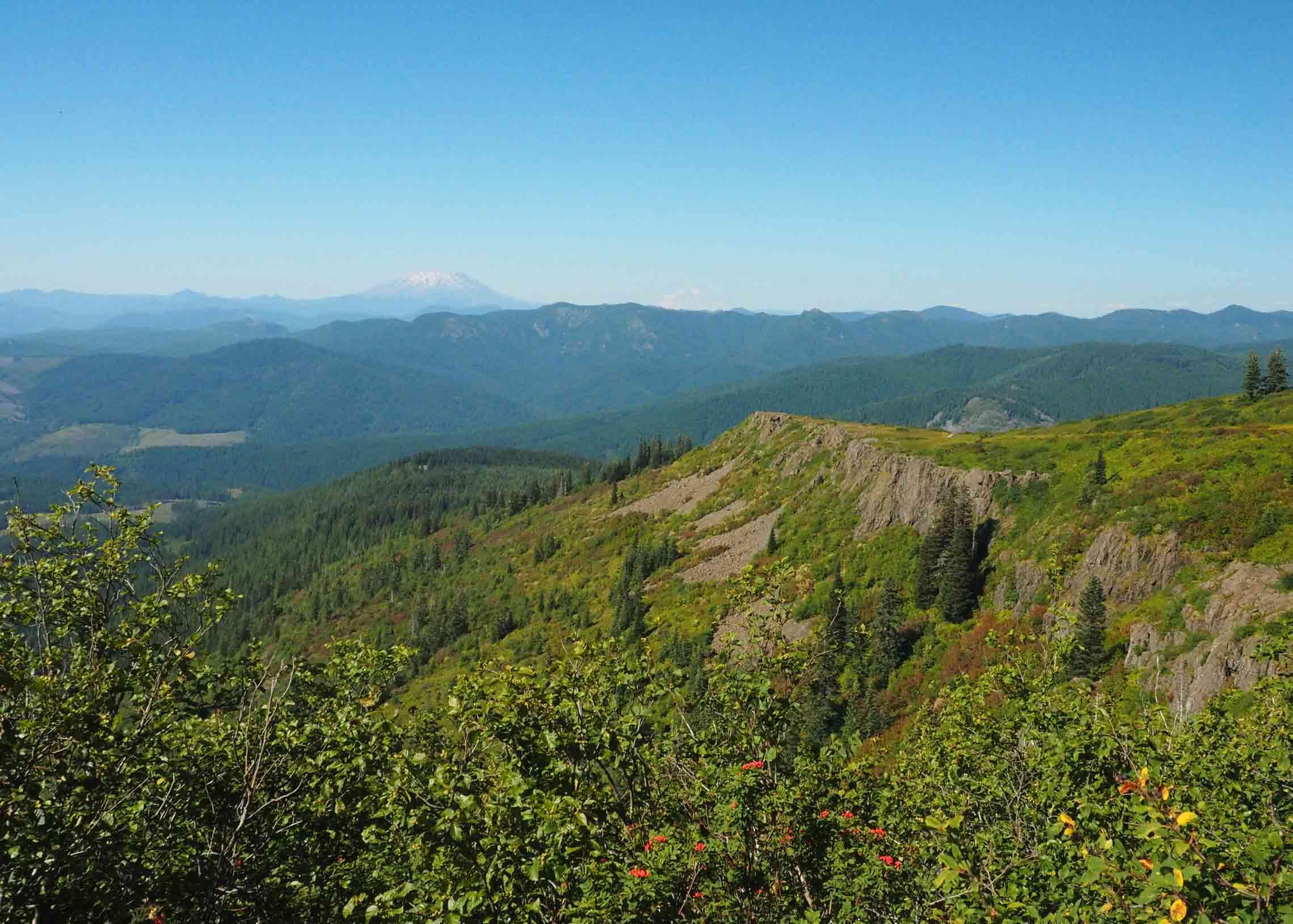 Chinook Trail